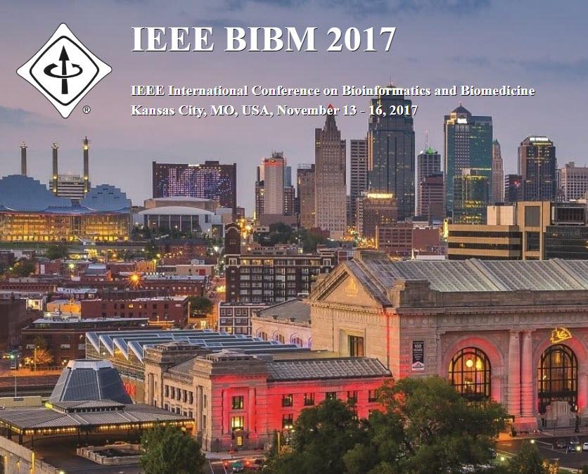 IEEEBIBM2017